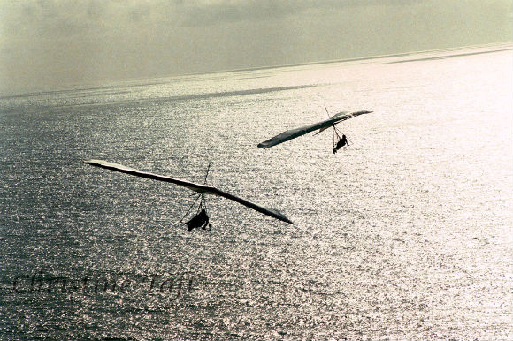 Photograph of two paragliders over the ocean